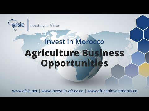 Invest Morocco Agriculture - Business Opportunities in Morocco Farming