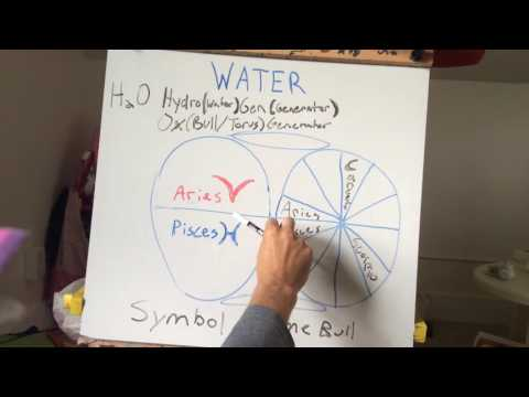 Syncretism of Water within the Torus Field