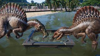 2 T-Rex & 2 Spinosaurus Breakout & Fight! Jurassic World Evolution (4K 60FPS)