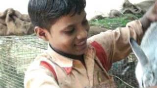 INDIA-RABBIT-FARMS VIDEO 21