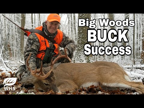 How To Hunt BIG WOODS PUBLIC LAND BUCKS - Big PA Buck Down!