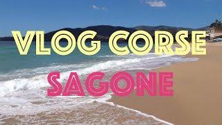 Vlog - Une journée dans les vagues à Sagone! - Corse 2018