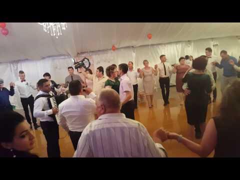 formatia boboceii nunta la cort 2016