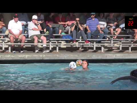 Los Gatos Vs Palo Alto - Varsity Waterpolo