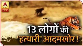 Sansani: Man-Eater Tigress Kills 13 People In Maharashtra | ABP News
