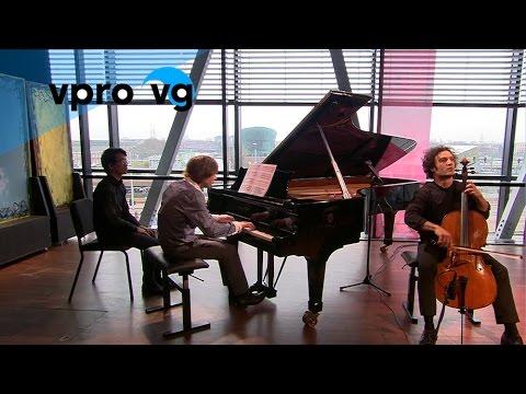 Nicolas Altstaedt & Frank van der Laar - M.Rostropovich/ opus 5 - Humoresque (live)