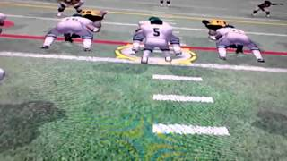 Wacky weekends NFL : fever 2003