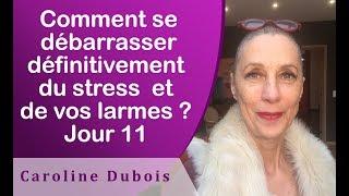 COMMENT EN FINIR AVEC LE STRESS - Jour 11 - EFT en Français #200