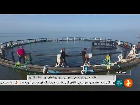 Iran & Norway joint project, Fish farming cage in Caspian Sea, Anzali قفس ماهي پروژه نروژ و ايران