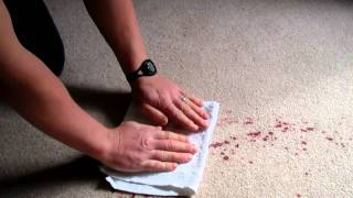 How to Clean Red Wine Out of Carpet: Carpet Care & Cleaning Victoria, BC (created March 2011)