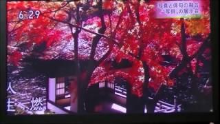 NHK和歌山ニュース 「きのくに句会・写俳展」