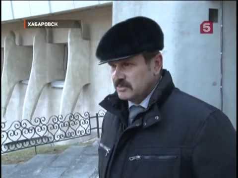 Дикий кабан устроил погром в гостинице Хабаровска