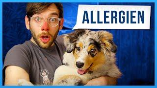 Allergien töten dich! [feat. LeFloid]