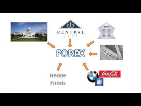 Forex voor ambitieze beginners forex.com