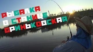 Рыбалка в Ст.БРИНЬКОВСКАЯ!!!/(Судак,Щука)...