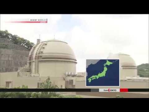 Ohi No 4 reactor restarted