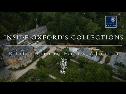 Oxford's Living Libraries: Botanic Garden and Harcourt Arboretum