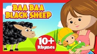 Baa Baa Black Sheep Song For Kids - Nursery Rhymes And Songs For Kids || Kids Hut English Rhymes