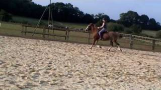 Me Riding Bladon And Then Izzy, At Gleneagles | Turisas - Land of Hope and Glory | Horse Riding