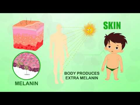 Skin | Human Body Parts | Pre School | Animated Videos For Kids