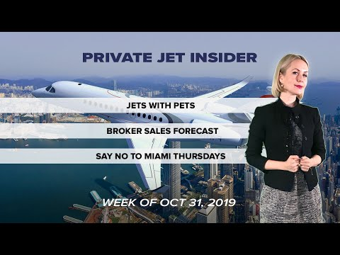Private Jet Travel with Pets Explained.  Thursdays in Miami for Private Jet Operators