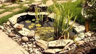 @День открытых дверей в питомнике растений Ландшафт74