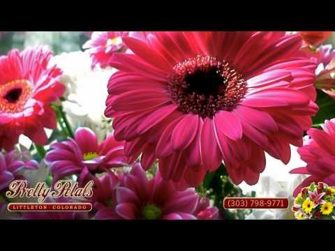 Pretty Petals Florist in Littleton, CO (303) 798-9771