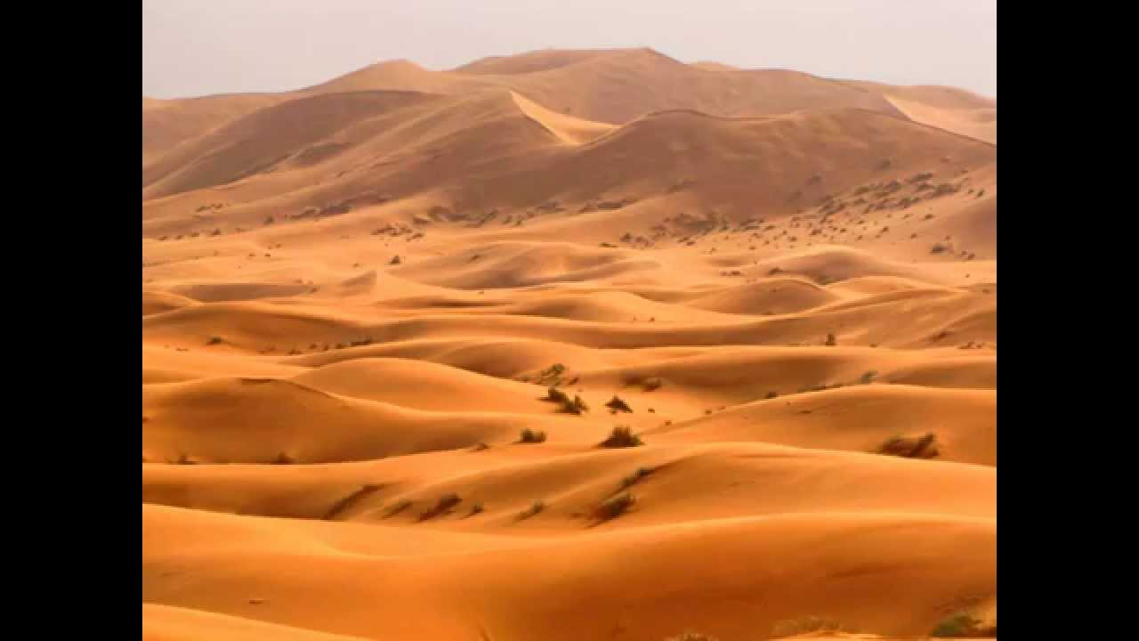 The largest desert in the world 64