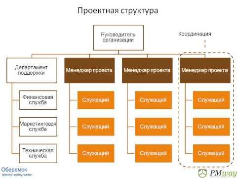 Организационная структура проектного управления