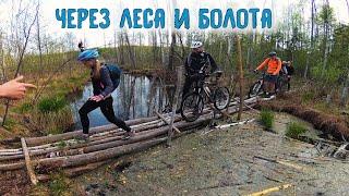 Лесные мтб приключения На велосипедах по болотам 10.05.2019