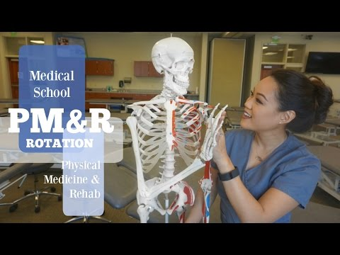 Medical School | PM&R Rotation - How to Treat Back Pain