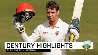 Alex Carey sizzles in quick-fire Shield century