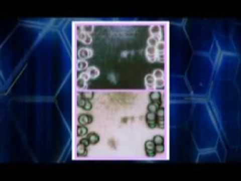 Cellfood Nu Science 5/8