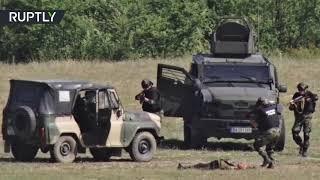 NATO conducts multinational drills 'Platinum Lion 2019' in Bulgaria