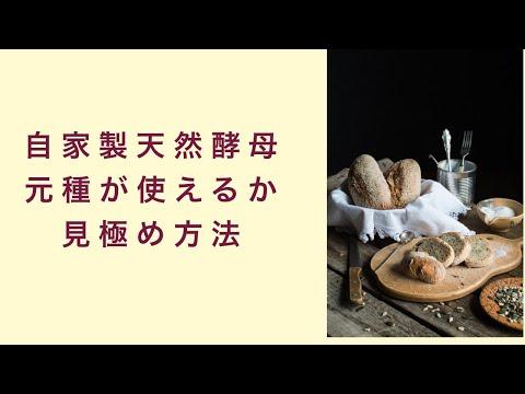 【自家製天然酵母】元種が使えるかどうかを見極める方法 フルーツ酵母 自家製天然酵母 パン教室 教室開業 大阪 奈良 東京 福岡 名古屋