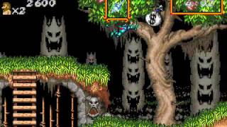 Game Boy Advance Longplay [155] Super Ghouls 'n Ghosts