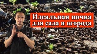 идеальная земля для огорода и сада. Какой должна быть, как создать плодородную почву на участке?