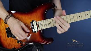 Baixar You must learn partial strumming - Guitar mastery lesson