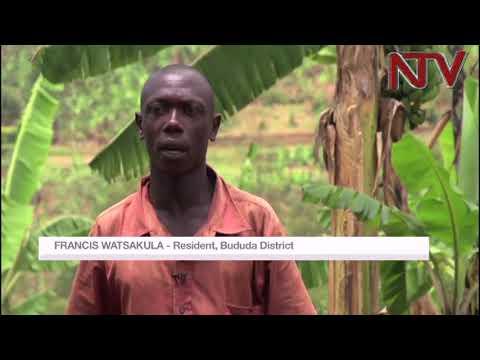 NTV GREEN: Understanding Bududa landslides