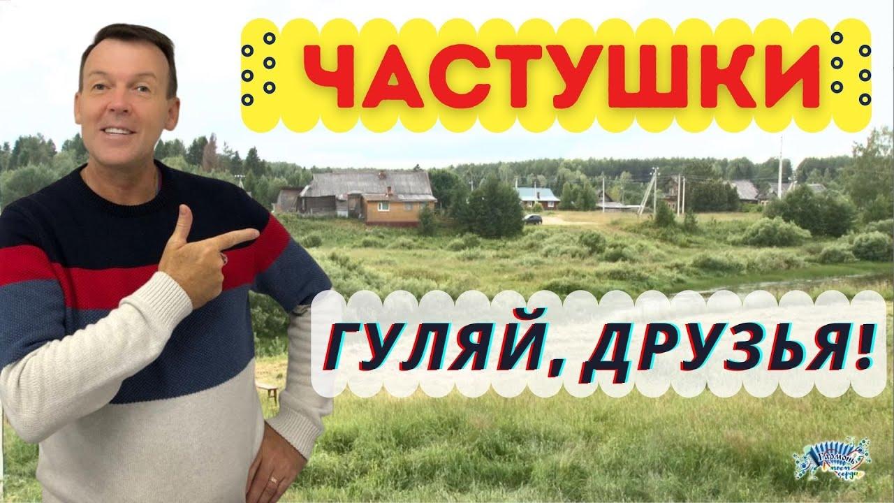 Гуляй, друзья! Частушки. Деревня Пермас. Владимир Кузнецов