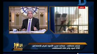العاشرة مساء |  3 أسود تهاجم مدرب بقرية سياحية على طريق مصر اسكندرية الصحراوي