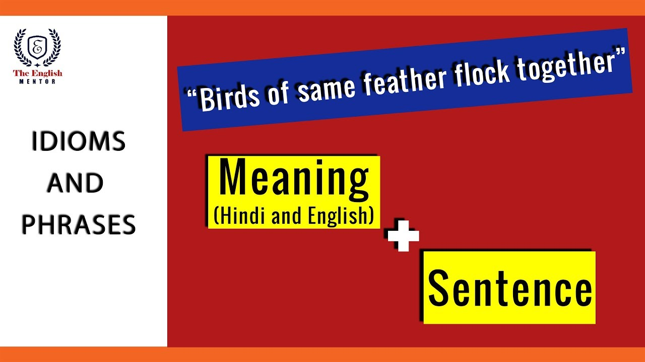 Birds Of Same Feather Flock Together Idioms And Phrases