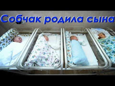 Ксения Собчак родила сына. Фото из роддома.