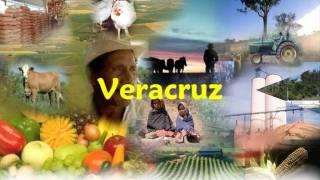 Himno Veracruzano-esbio.wmv
