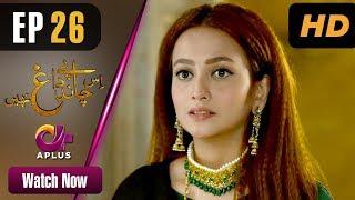 Is Chand Pe Dagh Nahin - Episode 26 | Aplus ᴴᴰ Dramas | Zarnish Khan | Pakistani Drama