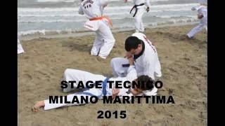 Academy Taekwondo Ticino (maestro Mohamed Matrab)