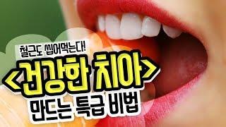 [집중!] 치과 갈 돈 굳었다...♡ 백세 치아 건강법