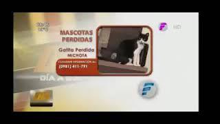 María Teresa López genera risas al presentar a una gata