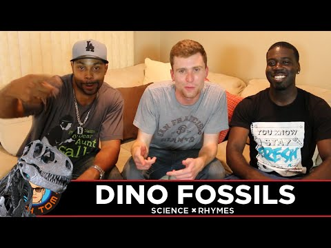 Science × Rhymes (#16) Dino Fossils