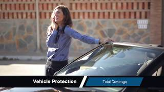 RoadVantage Bundle — Tire & Wheel, Paintless Dent Repair, Windshield Repair, and Key Replacement